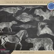 Chills & Thrills- Chalk Skeleton Stamp Kit 1