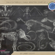 Chills & Thrills- Chalk Skeleton Stamp Kit 2