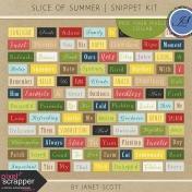 Slice of Summer- Snippet Kit