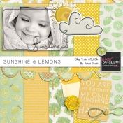 Sunshine and Lemons- Pixel Scrapper Designer Blog Hop