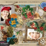 Woodland Winter- Element Kit
