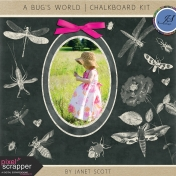 A Bug's World- Chalkboard Kit