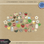 Strawberry Fieds- Charm Kit