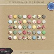 Strawberry Fields- Brad Kit