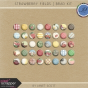 Strawberry Fields- Brad Kit