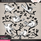Birds & Branches Templates