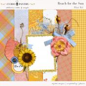 Reach for the Sun Mini Kit