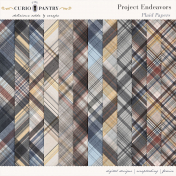 Project Endeavors Plaid Papers