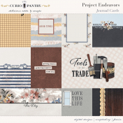 Project Endeavors Journal Cards