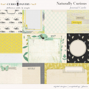 Naturally Curious Journal Cards
