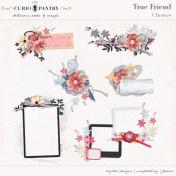 True Friend Clusters