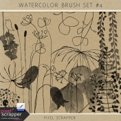 Watercolor Brush Kit #4