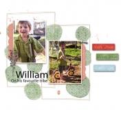 William,s favourite trike