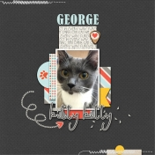 George the Kitty Kat