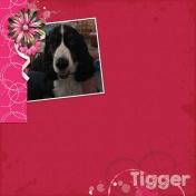 Tigger Love