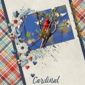 Cardinal in the Woods (LS Woodland Princess)