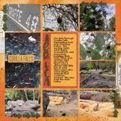 Animal Kingdom- Africa