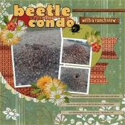 Beetle Condo