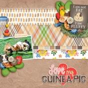 Love My Guinea Pig