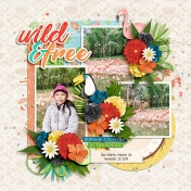 Wild and Free2
