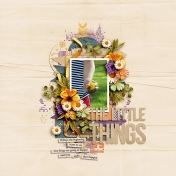 The Little Things2