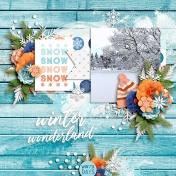 Winter Wonderland4