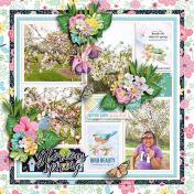 Gloroius Spring