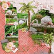 Flamingo Fabulous