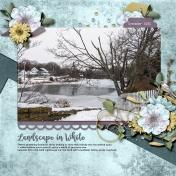 Landscape In White