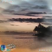 Coral Coast 2019