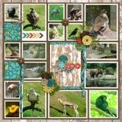 Seattle Zoo 2008 1