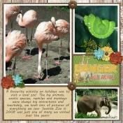Seattle Zoo 2008 3