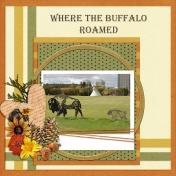 Where the Buffalo Roamed