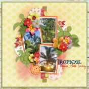 Tropical Never Gets Tiring