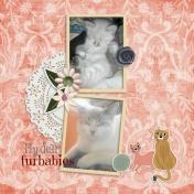 My beloved furbabies