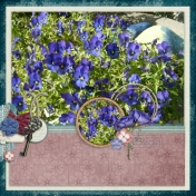 One fine day: gardening