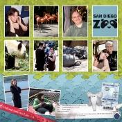 Sand Diego Zoo