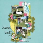 Swan Visit