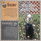Bear and Grizzly