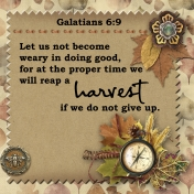 30 Days of Thankfulness, Day 24