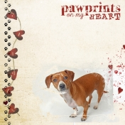 Pawprints On My Heart