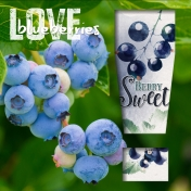 Love Blueberries