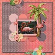 Breading flamingo