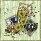 """Our Diva """"River"""""""