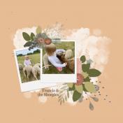 Francie & The Sheep