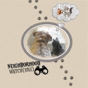 neighborhood watch(ers)