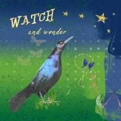 watch and wonder