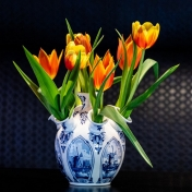 Tulips from Delft