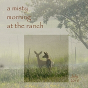 A Misty Morning at the Ranch