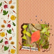 Falling Leaves This Fall